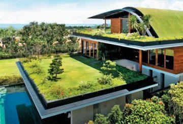 Coberturas verde: resfriamento urbano