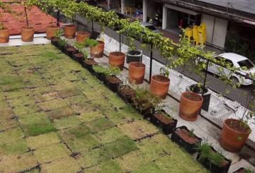 Entrevista: Arquiteto e Urbanista Juliano Guedes