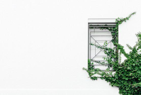Sustentabilidade e Arquitetura: qual a relação entre elas